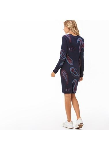 Lacoste Kadın  Elbise EF2041.41L Lacivert